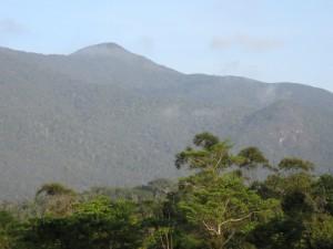 Mt Bartle Frere