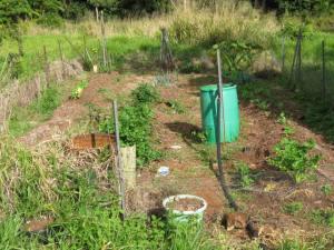 Mrs Gof's newly planted vege garden