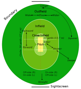 Proper cricket field