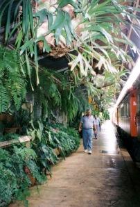 Kuranda_Railway_Station