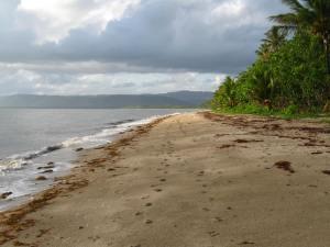 Newell beach south