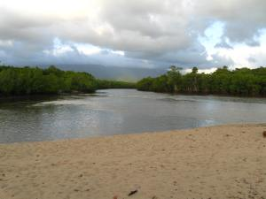 Mossman River estuary