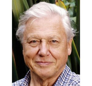 David Attenborough