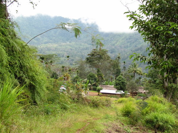 Afong village with Pindiu airstrip in background